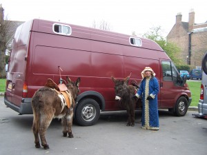 Linda making sure the donkeys are looking their best