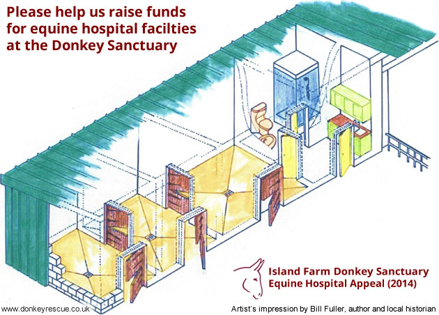Island Farm Donkey Sanctuary (Nr. Wallingford, Oxfordshire) are raising funds to build and equip an on-site equine hospital facility