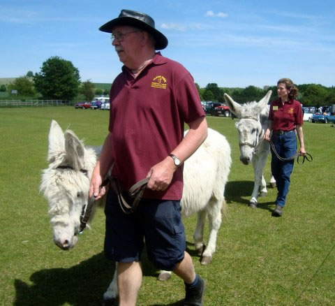 Volunteers leading Island Farm donkeys at a summer event