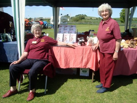 Volunteers running outdoor stalls at IFDS fundraising events