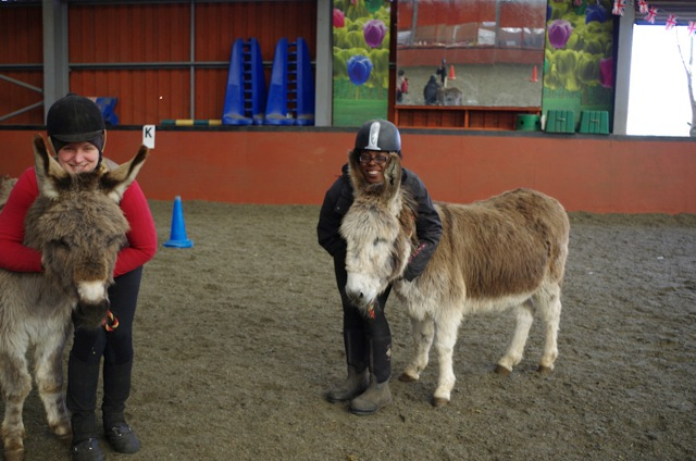 IFDS donkeys Peter and Rudolf at Wormwood Scrubs Pony Centre